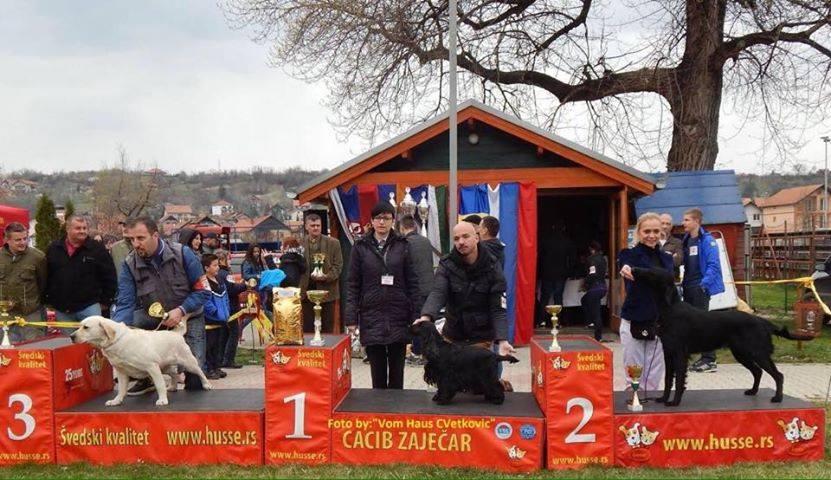 odi-bog-serbia